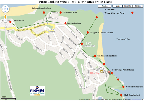 Stradbroke Island, Straddie, Tourist Map, Humpback whales, Straddie